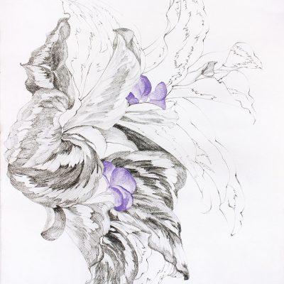 From my Verandah-2-Paula-Sengupta