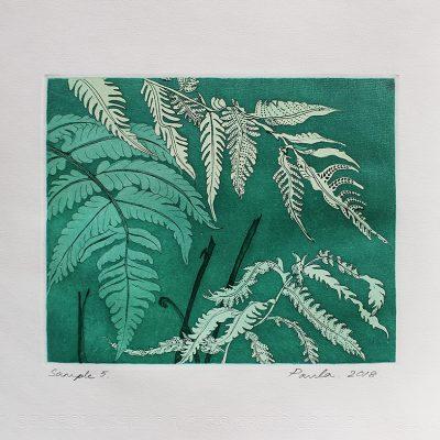 Hardy Fern-Sample 5-Paula-Sengupta