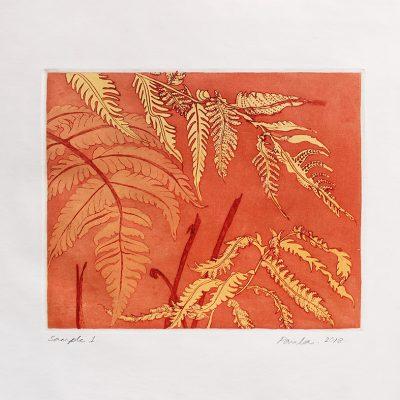 Hardy Fern - Sample 1-Paula-Sengupta