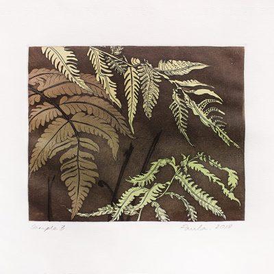 Hardy Fern-Sample 3-Paula-Sengupta