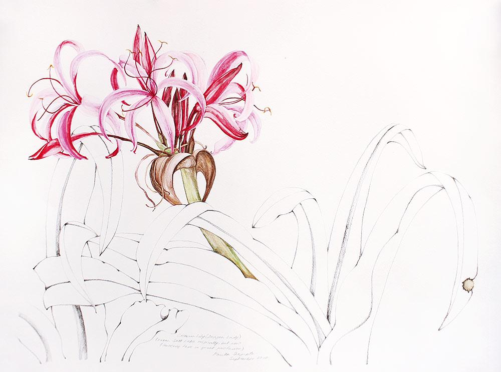 From the Garden-2-Paula-Sengupta