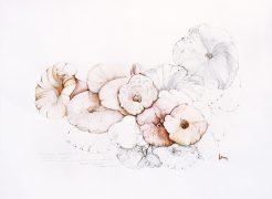 From the Garden-3-Paula-Sengupta