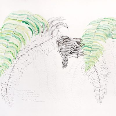 From the Garden-1-Paula-Sengupta