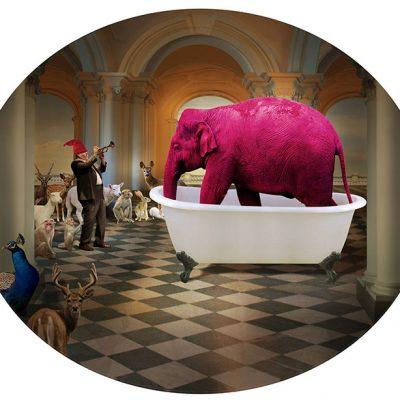 Pink-elephant-in-bath-tub