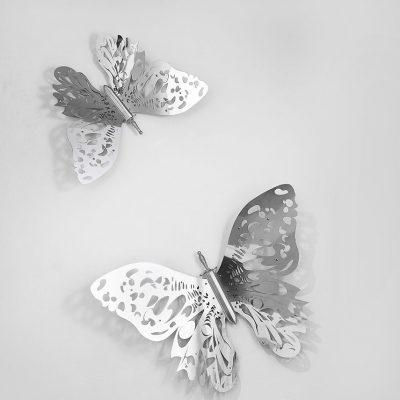 Vasudha Butterfly-Sunil-Gawde