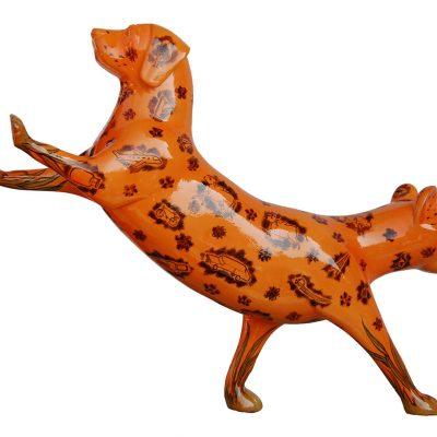 Catty Dog-Chintan