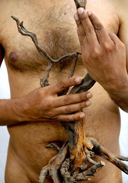 dead-wood-I-Ravi-Agarwal
