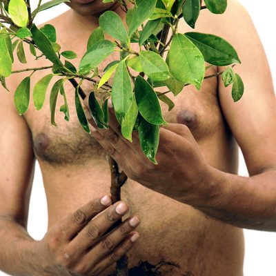dead-wood-II-Ravi-Agarwal