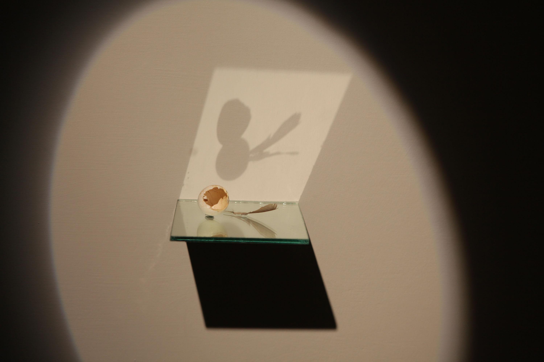 installation of show by Manisha Gera Baswani