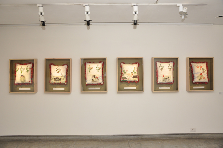 Installation of show by Paula Sengupta